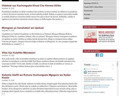 Global Investigative Journalism Network (GIJN)